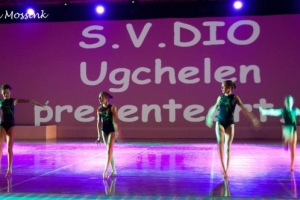 "2014-01-25 Uitvoering ""DIO's got talent"""